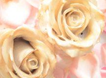 Von der grünen Hochzeit bis zur goldenen Hochzeit