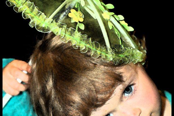 Der Mädchenkalender von Prinzessin Emelie